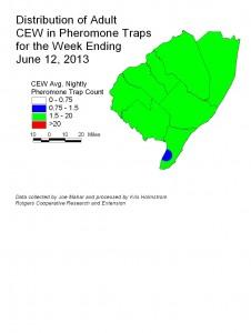 CEW Pheromone Week Ending 6/12/13