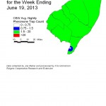 CEW Distribution in Pheromone Network 6/19/13
