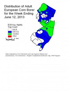 ECB Week Ending 6/12/13