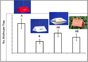 Data show red delta traps to be more effective than white delta traps in catching adult Sparanothis fruitworm.