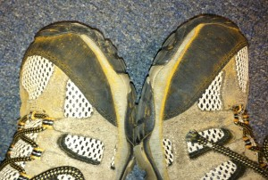 Rust spores all over my shoes. Photo: Richard Buckley, Rutgers PDL