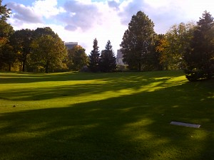 Recently restored lawn on Frisbee Hill in Central Park.
