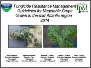 fungicide guidelines
