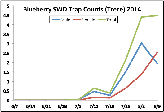 Blueberry SWD