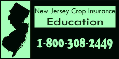 Crop Insurance Contact