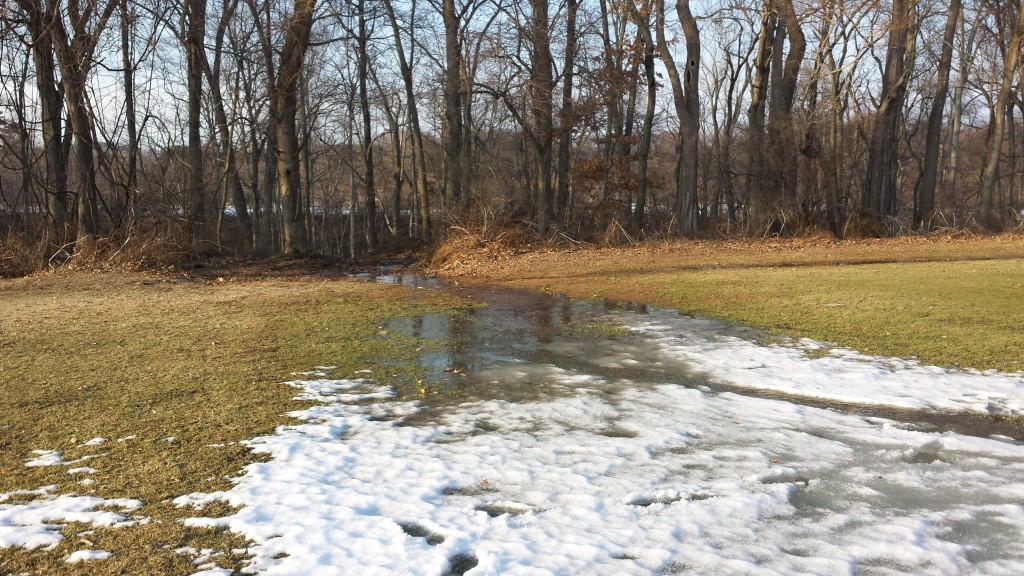 Turf-Winter-Thaw