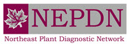 Northeast Plant Diagnostic Network