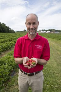County Agent Peter Nitzsche displays strawberry crop.