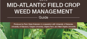 2019 Mid-Atlantic Field Crop Weed Management Guide